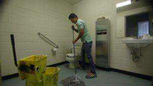 Cleaning Companies Hamilton